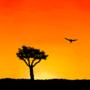 Red Sunset by SketchyAtom