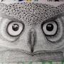 Owl by kalmA1337