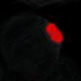 Splinter Cell by DeathCloaker