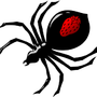 Spiderberry by Spiderberry