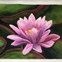 Waterlily Watercolor Painting by ScribbleFix
