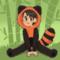 Red Panda Boy