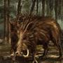 Toxic boar