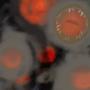 Macro-Viruses by Emberphyte