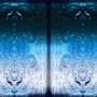Dual by Anarc-Ak2247