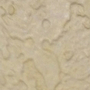 Thought experiment- plaster painted wall into creatures 2 by ProjectNetoku