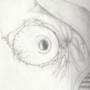 Wide Eye by kingdragonreaper