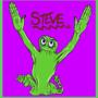 Steve by insan0