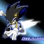 Seelkadoom the Hedgehog