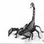 Scorpionz by Lagg