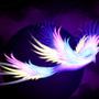 Flying Colors by meganekko
