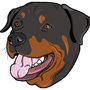 Rottweiler by NancyZonneveld