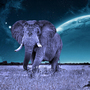 Cosmic Elefant by boneflip38