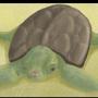 TurtleTime by Sqeezy