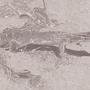 The Lizard by Gwyvern