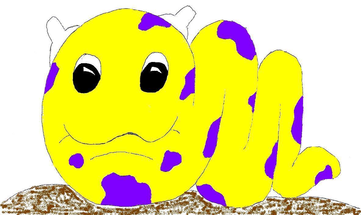 Slug Snail Thing