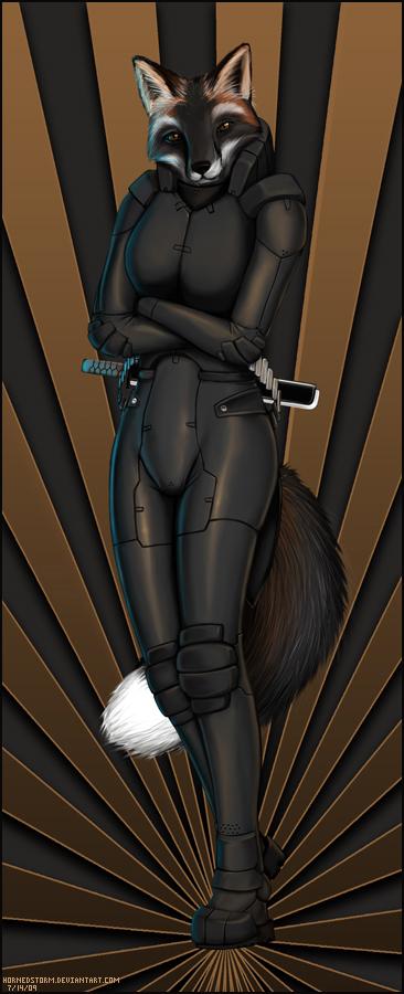 Fox ninja S