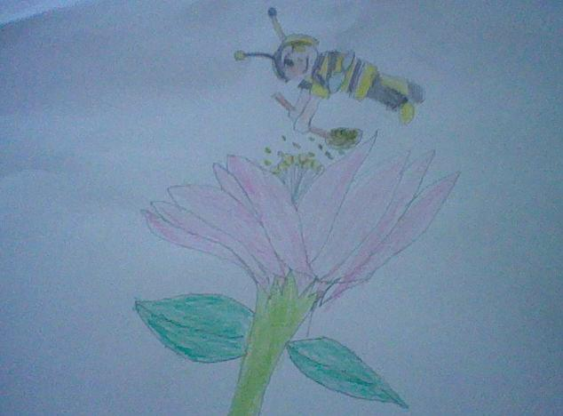 When bees fly