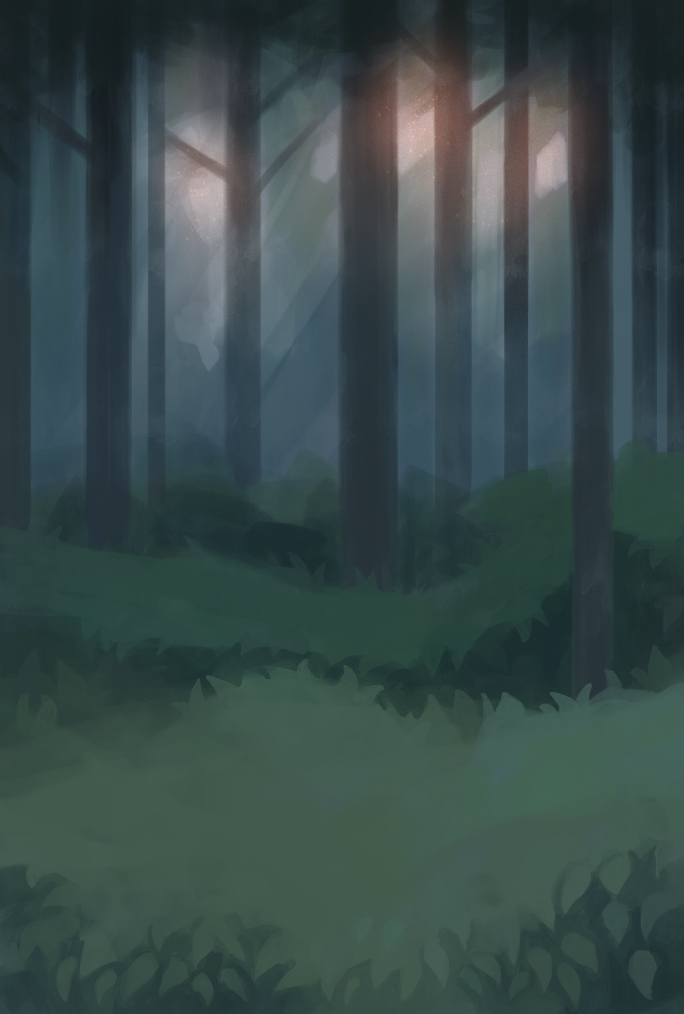 Foggy forest sunset