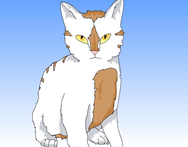 Cat charcter 2