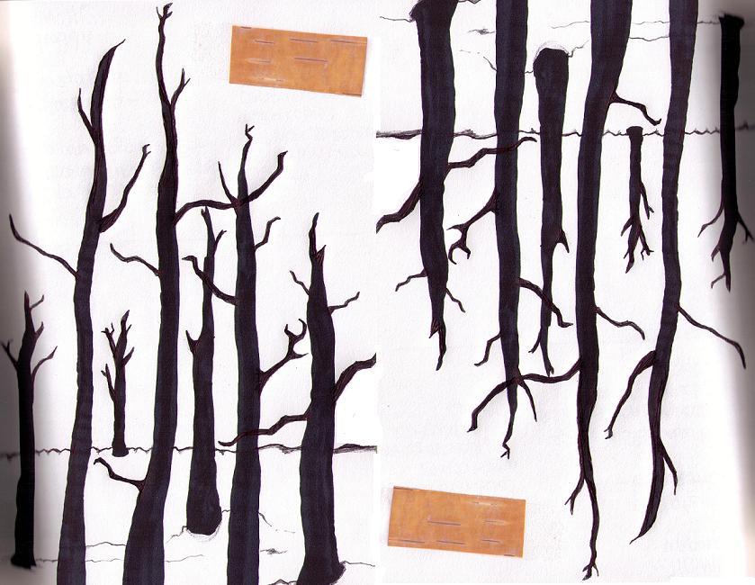 forestation.