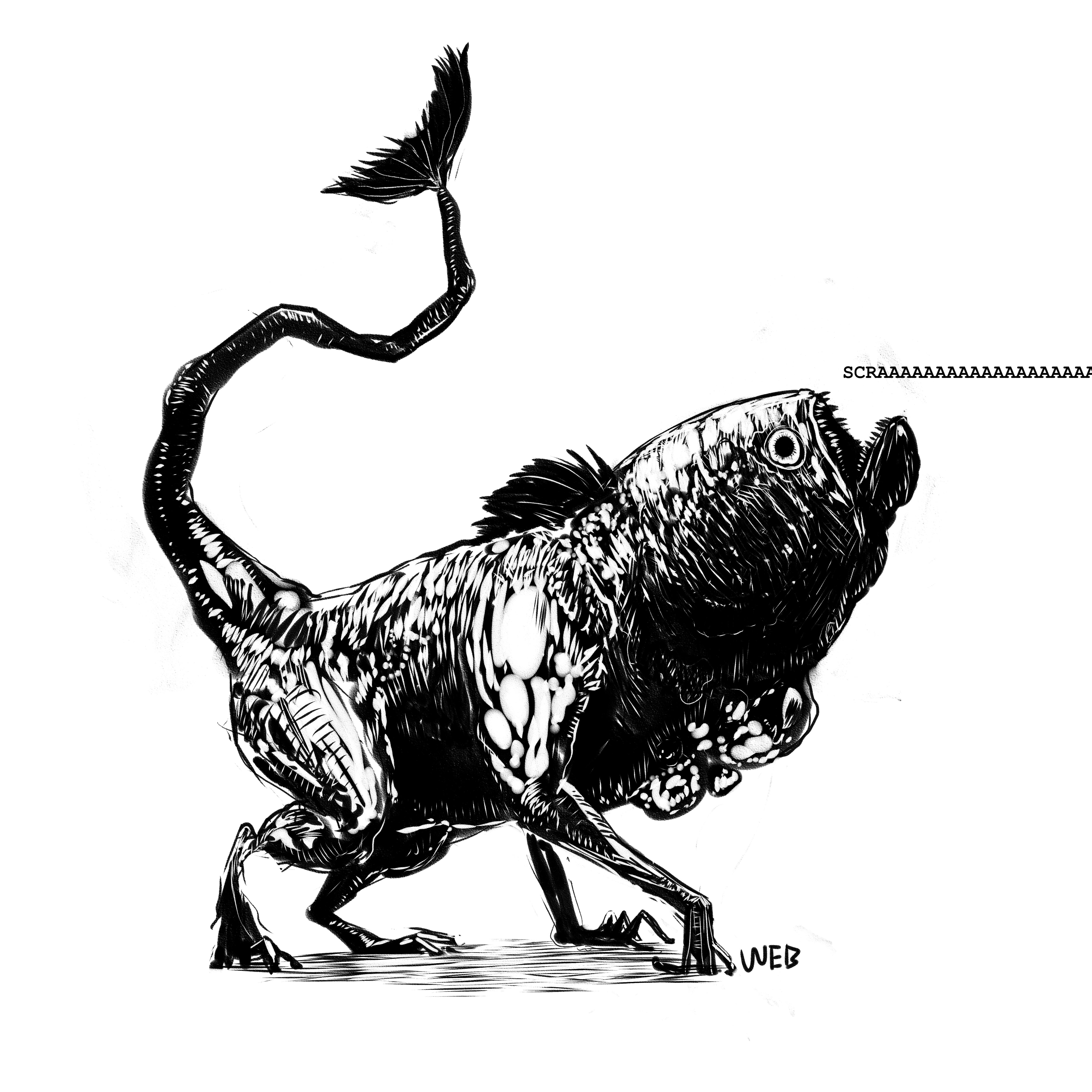 Piranah pup