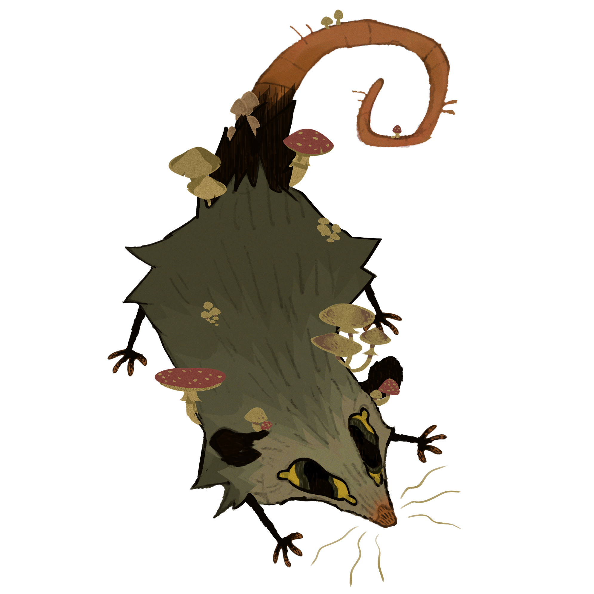 Mushroom opossum 2