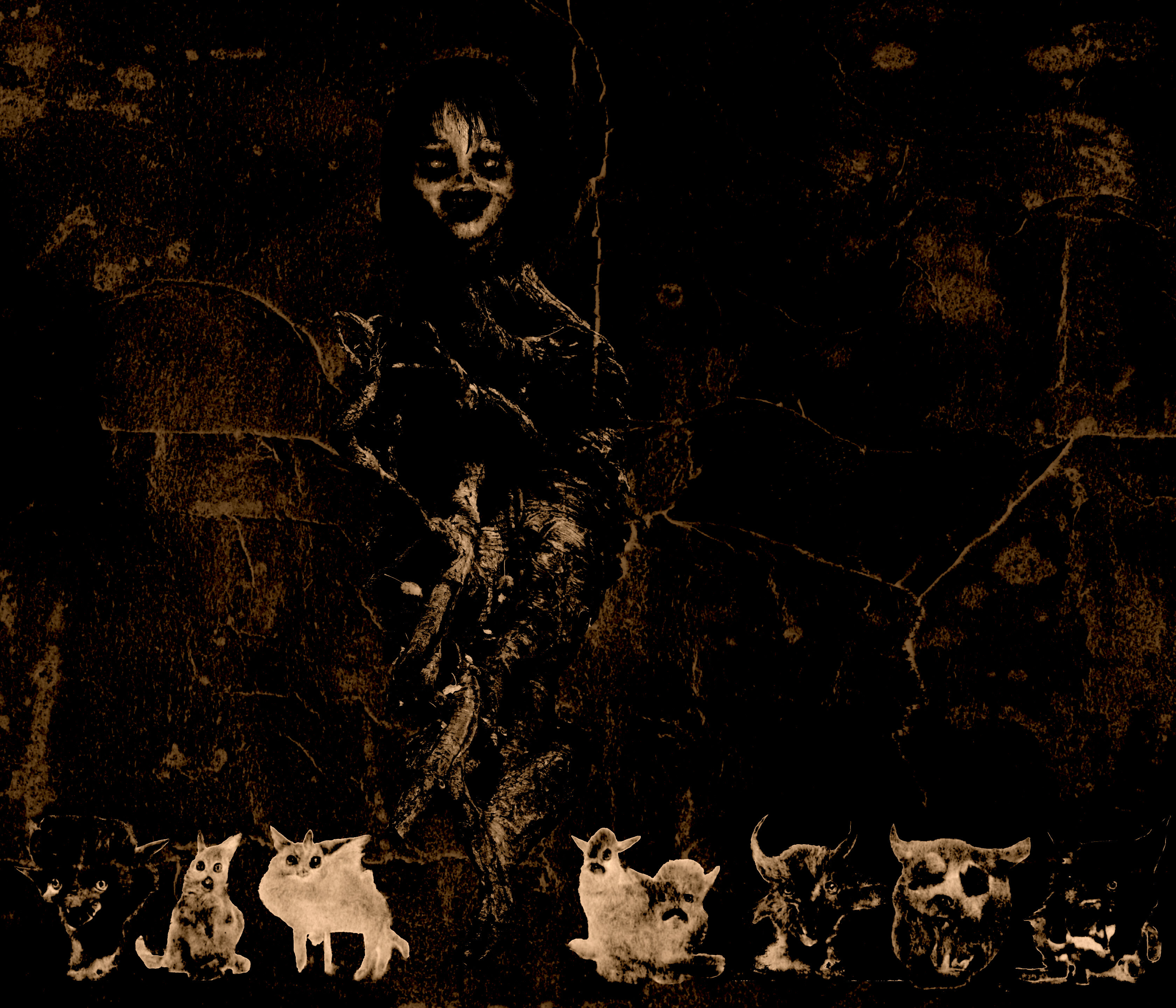 The Woodwitch and her seven cats