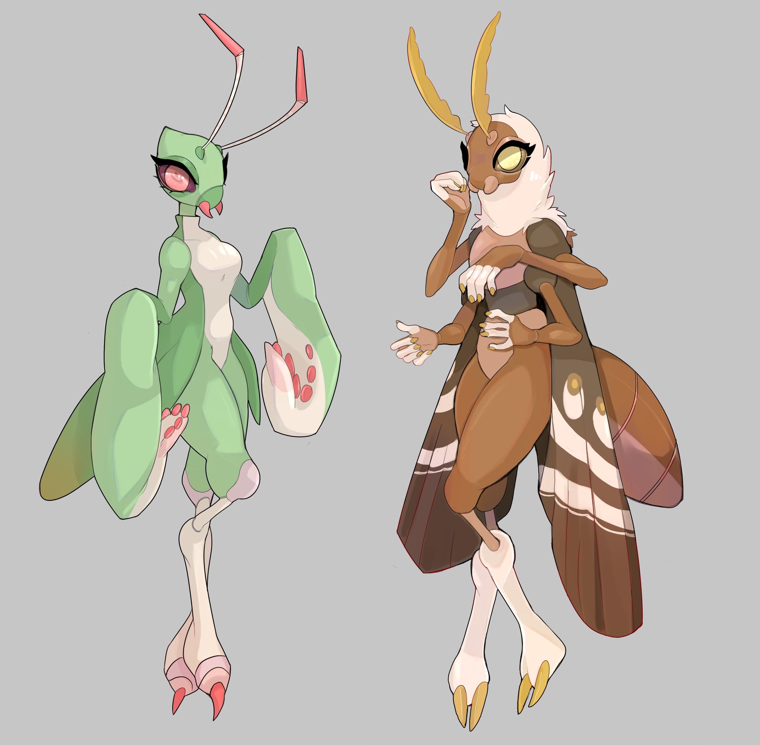 Insect waifus