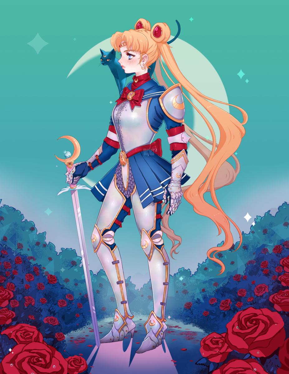 Sailor Knight