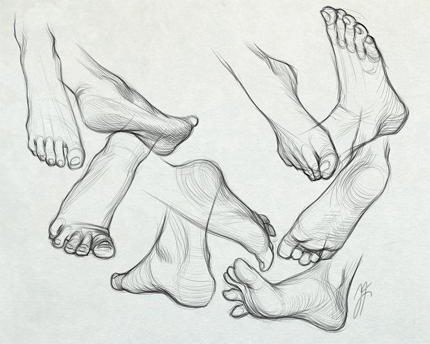 Foot Studies