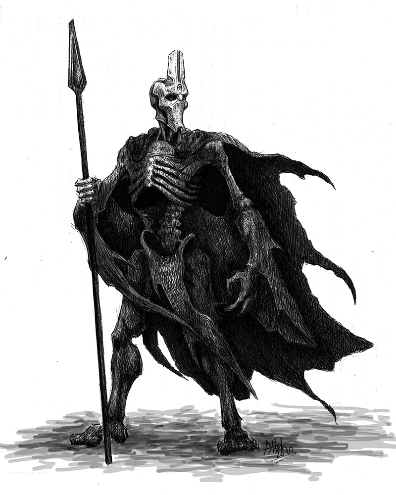 Ikana Warrior