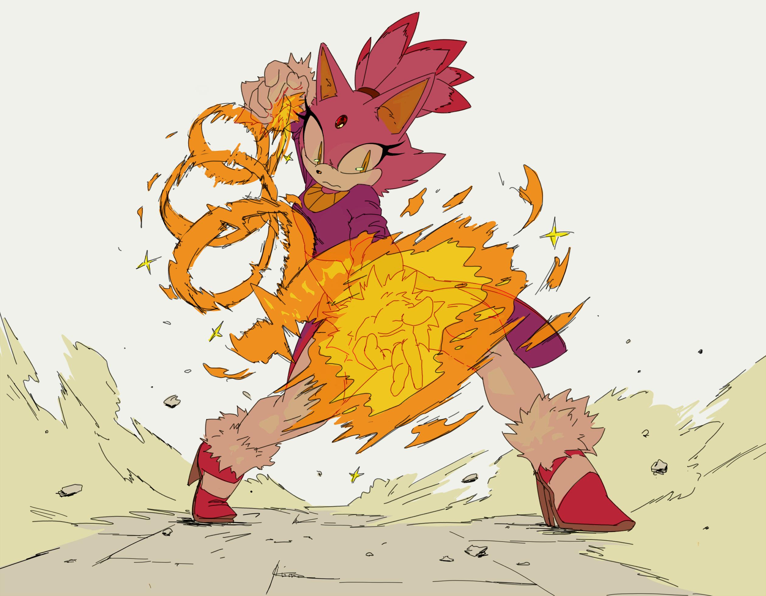 Blaze the Damn Cat