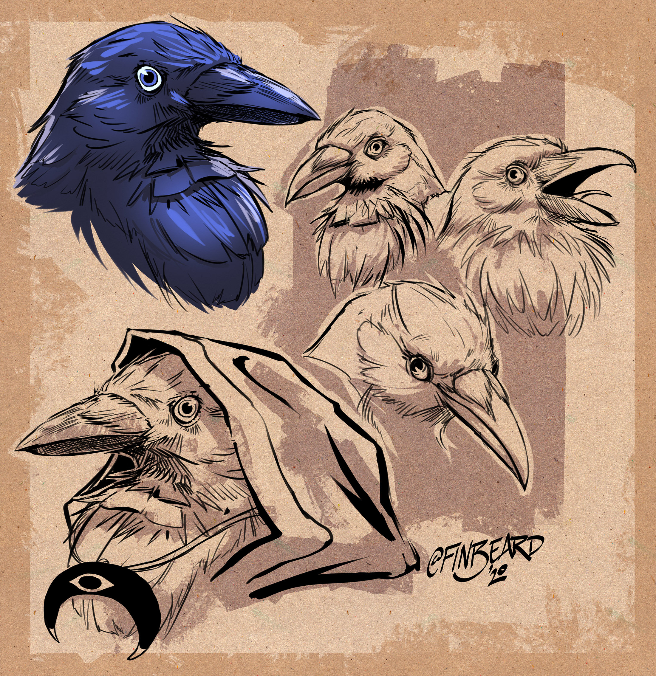 corvid sketchbook collection
