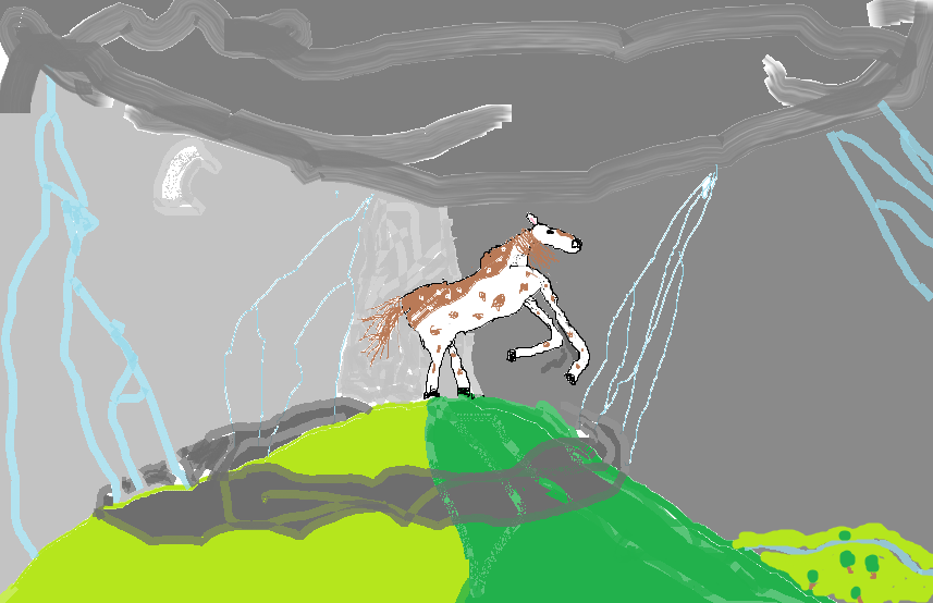 Pony on a mountain