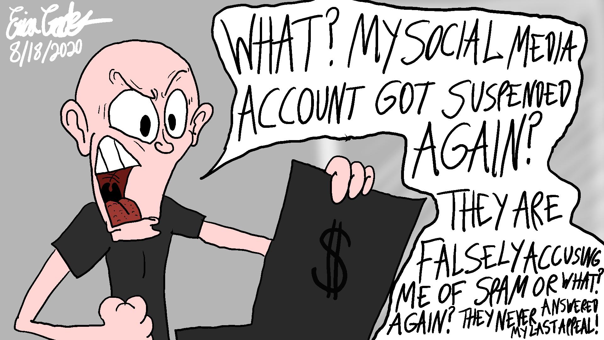 Erica Crooks Comics 2020 : Social Media Struggles