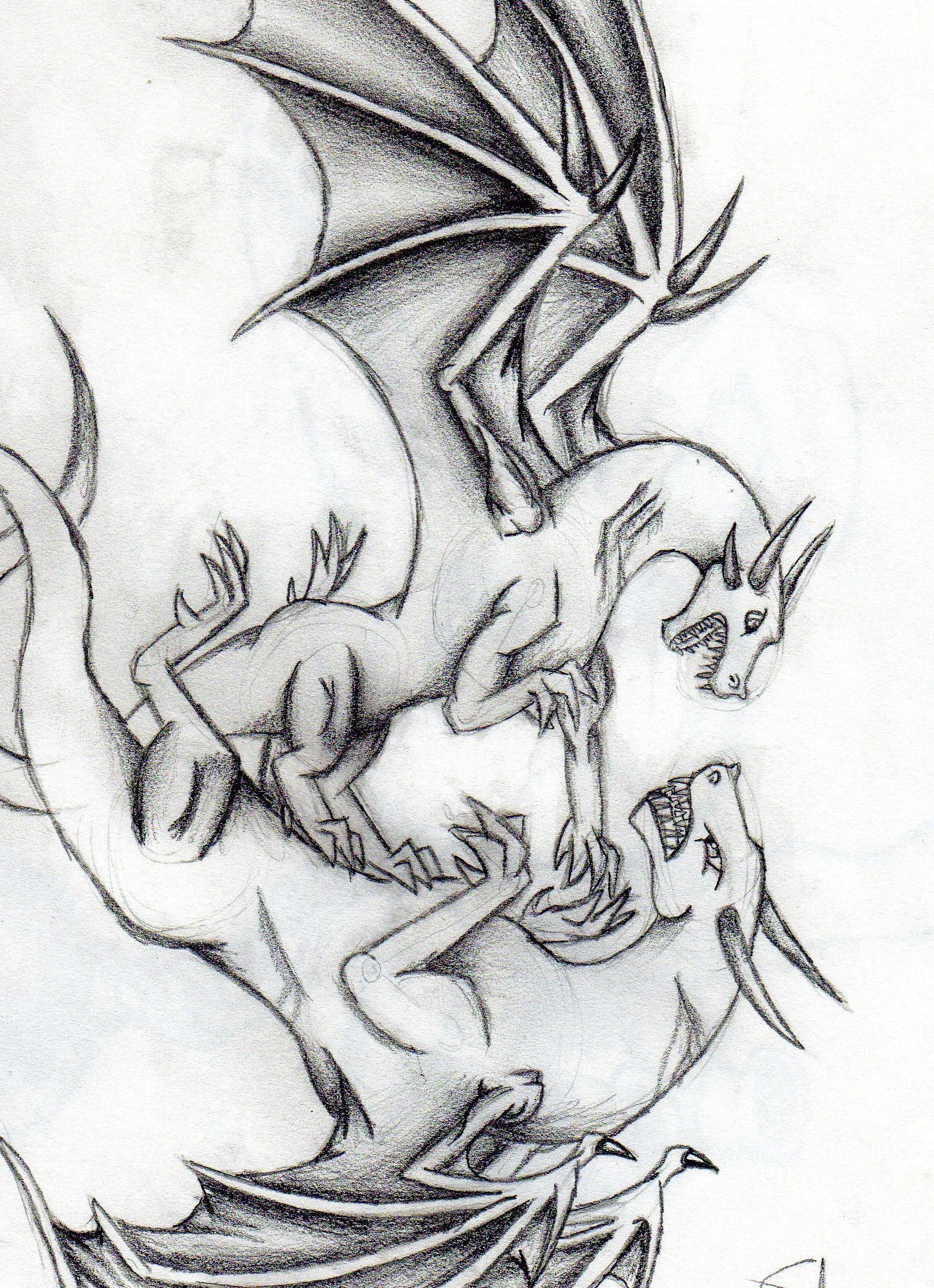 Dragon Fight :P