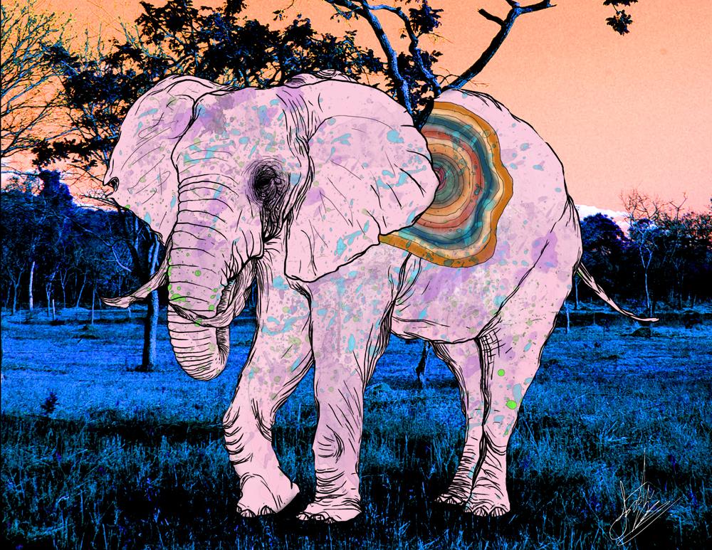 JawBreaker Elephant