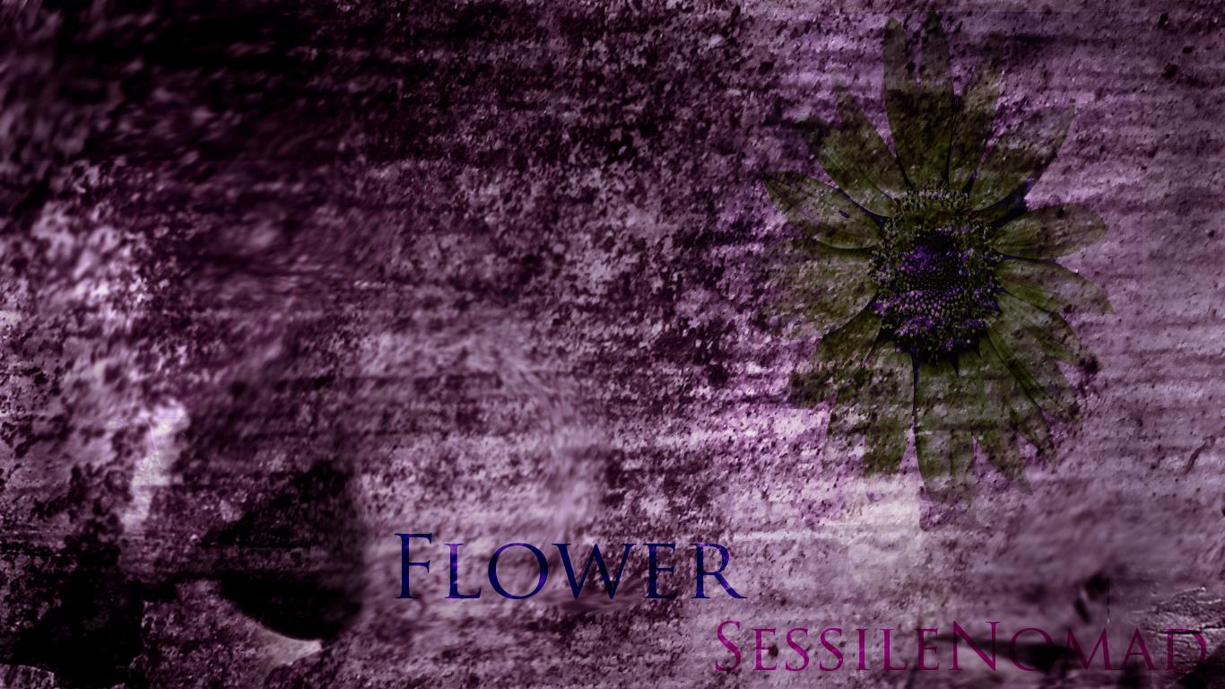 Flower /SN/