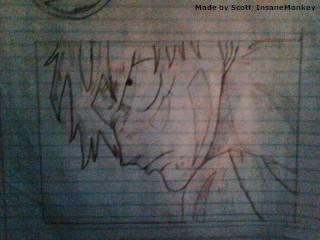 Monkey D. Luffy - Gear Second