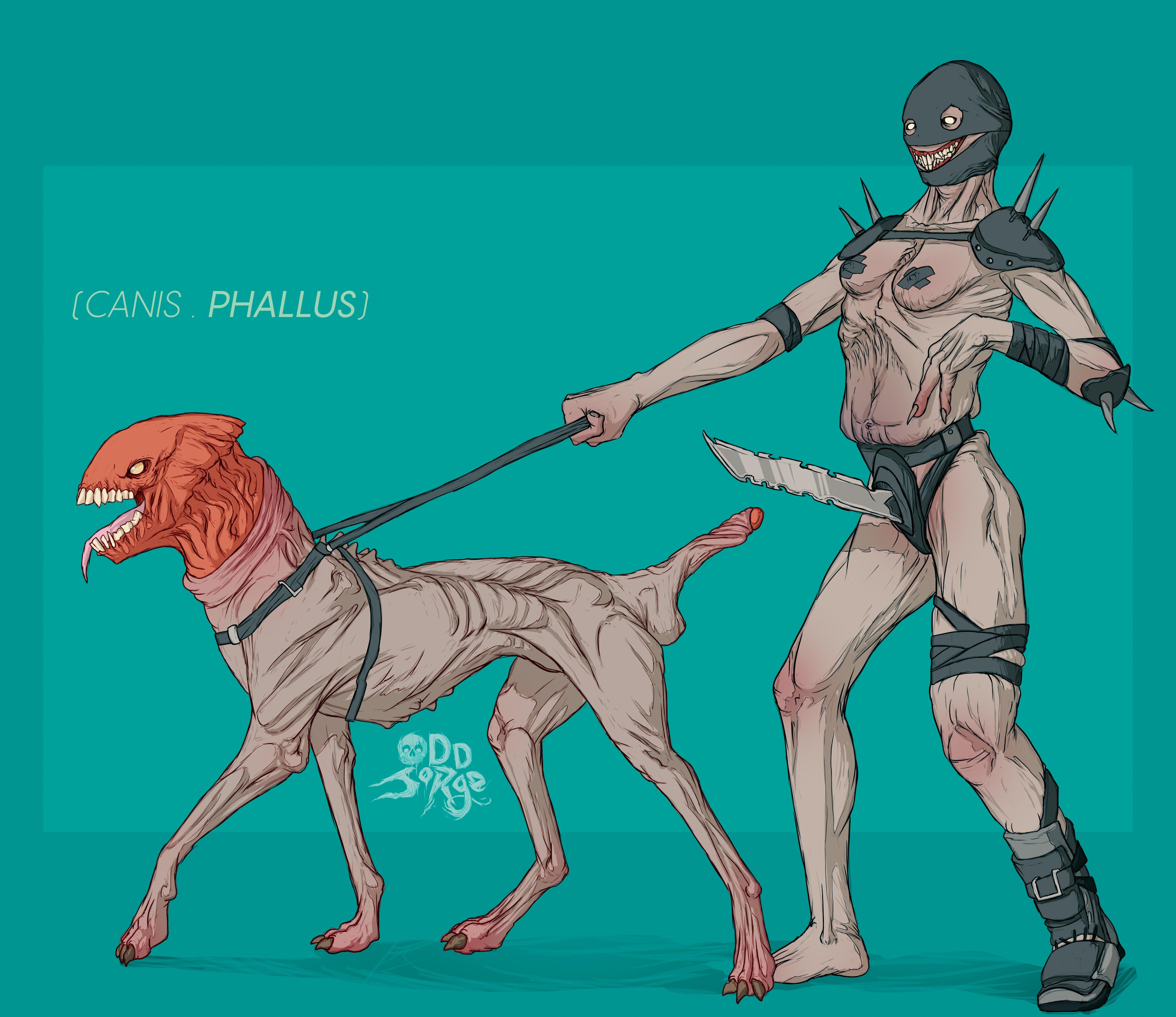 Canis.PHALLUS