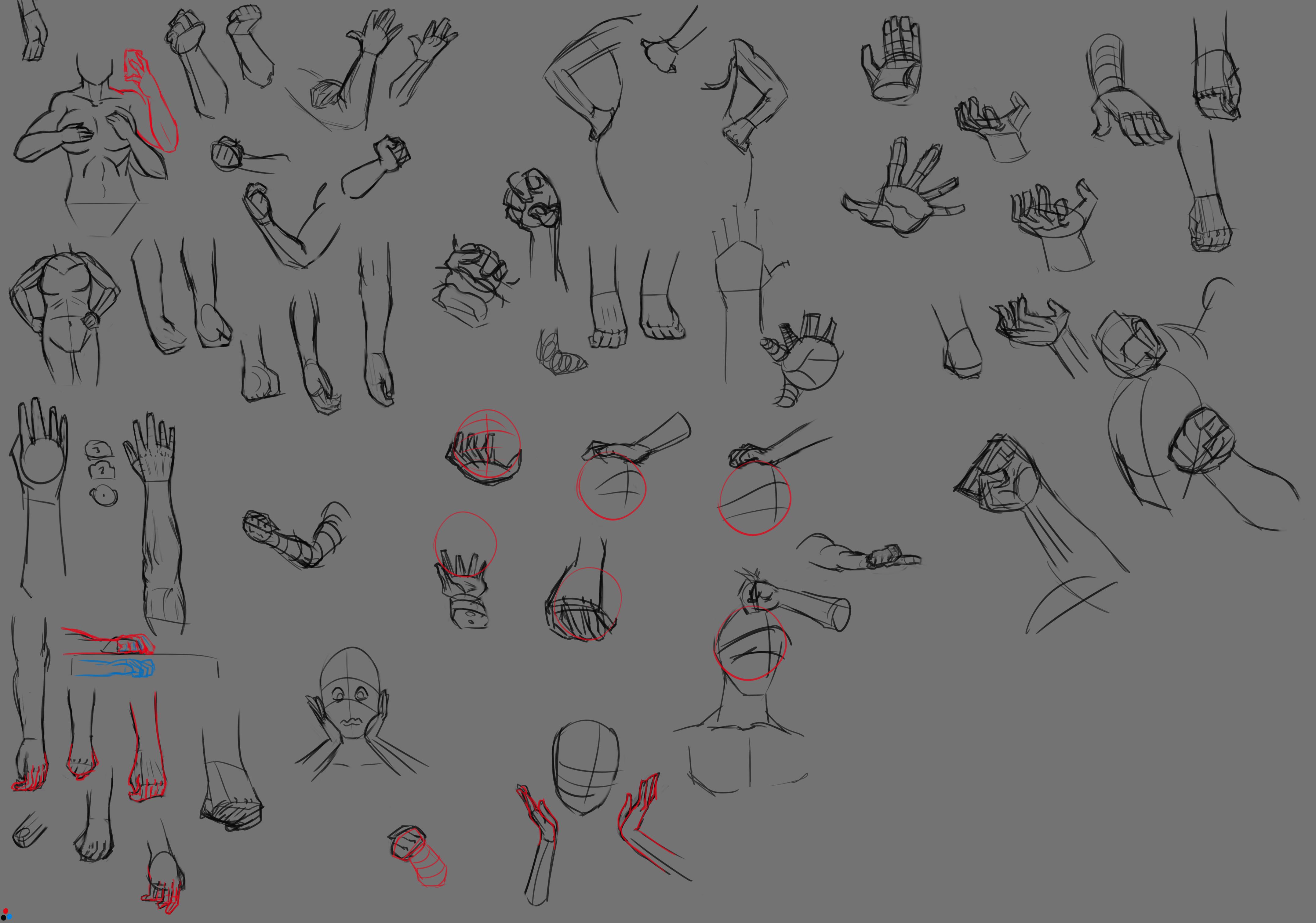 Hand studies sketches