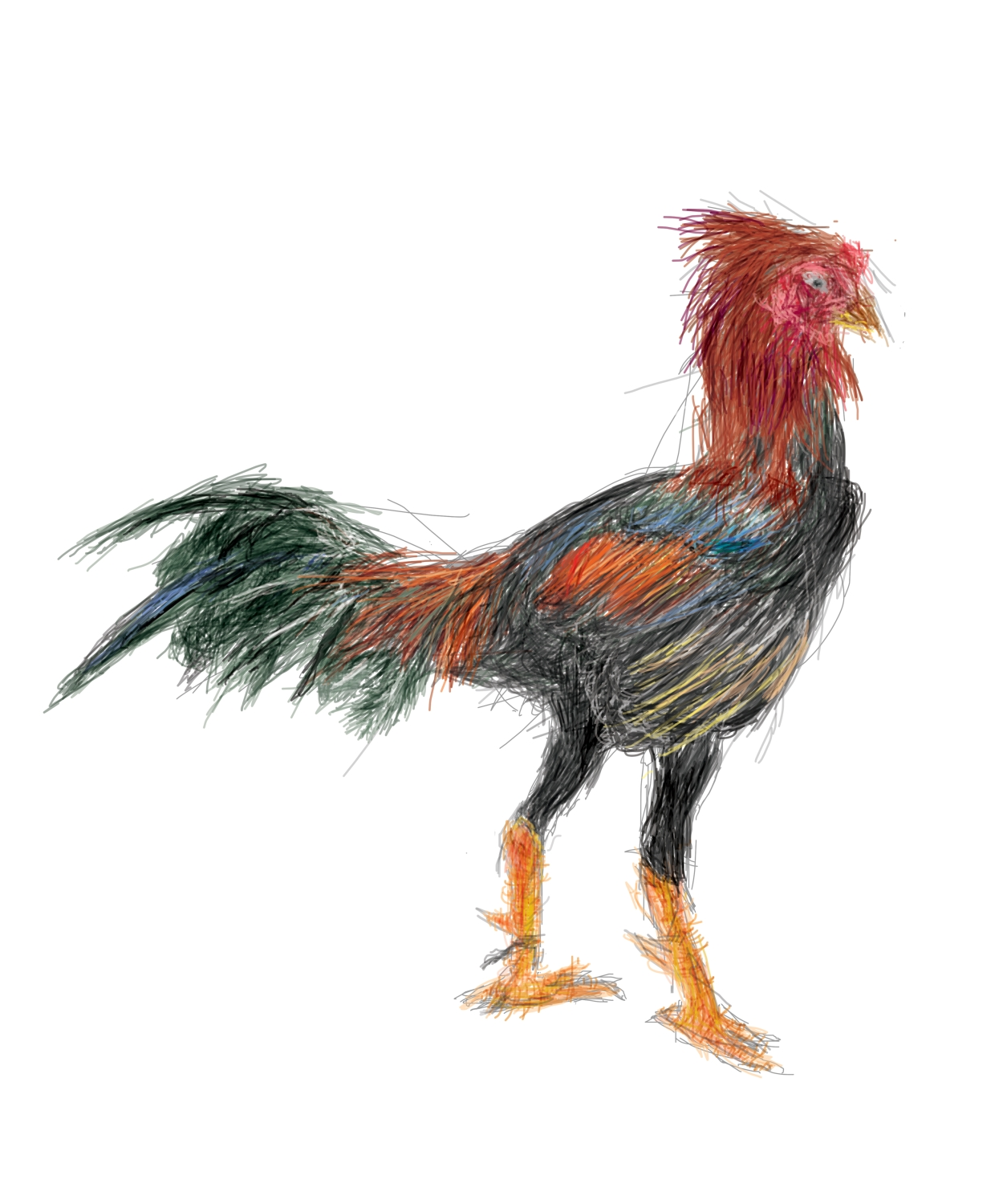 Brush Rooster