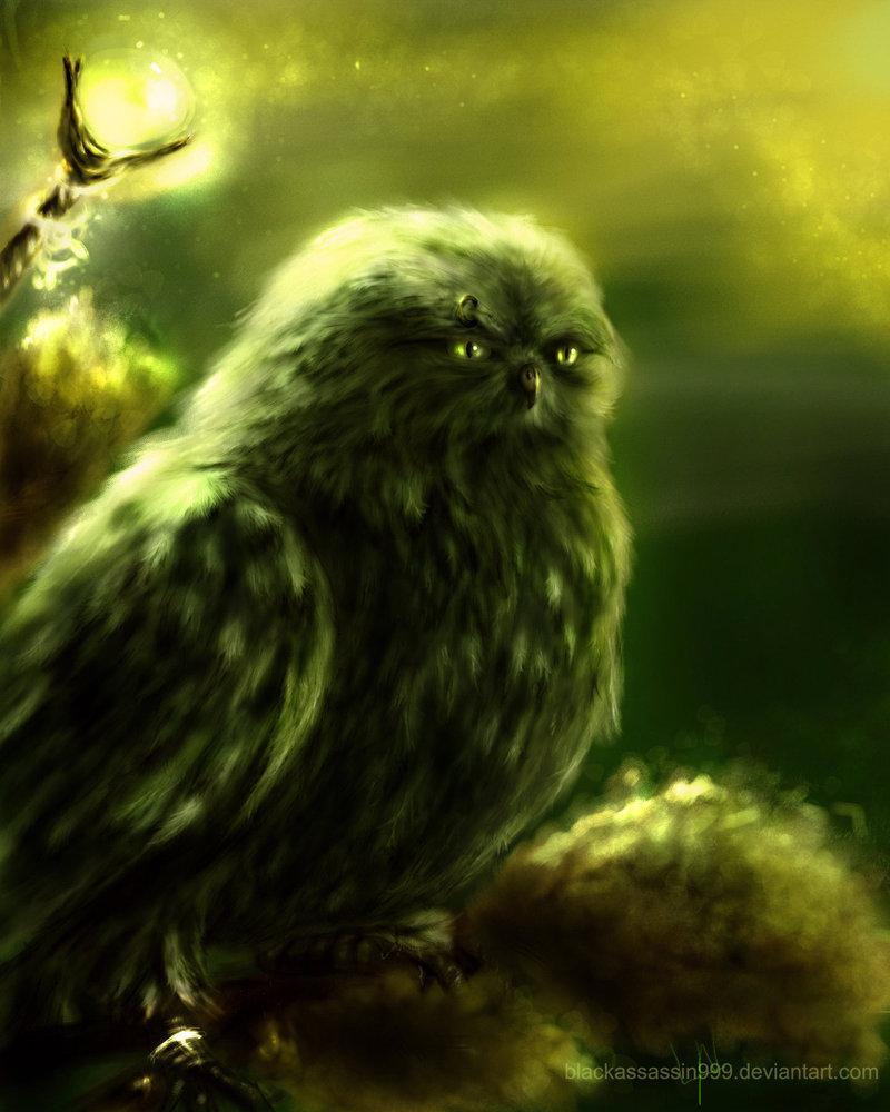 Druid owl