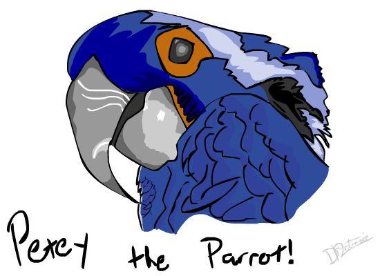 Petey the Parrot
