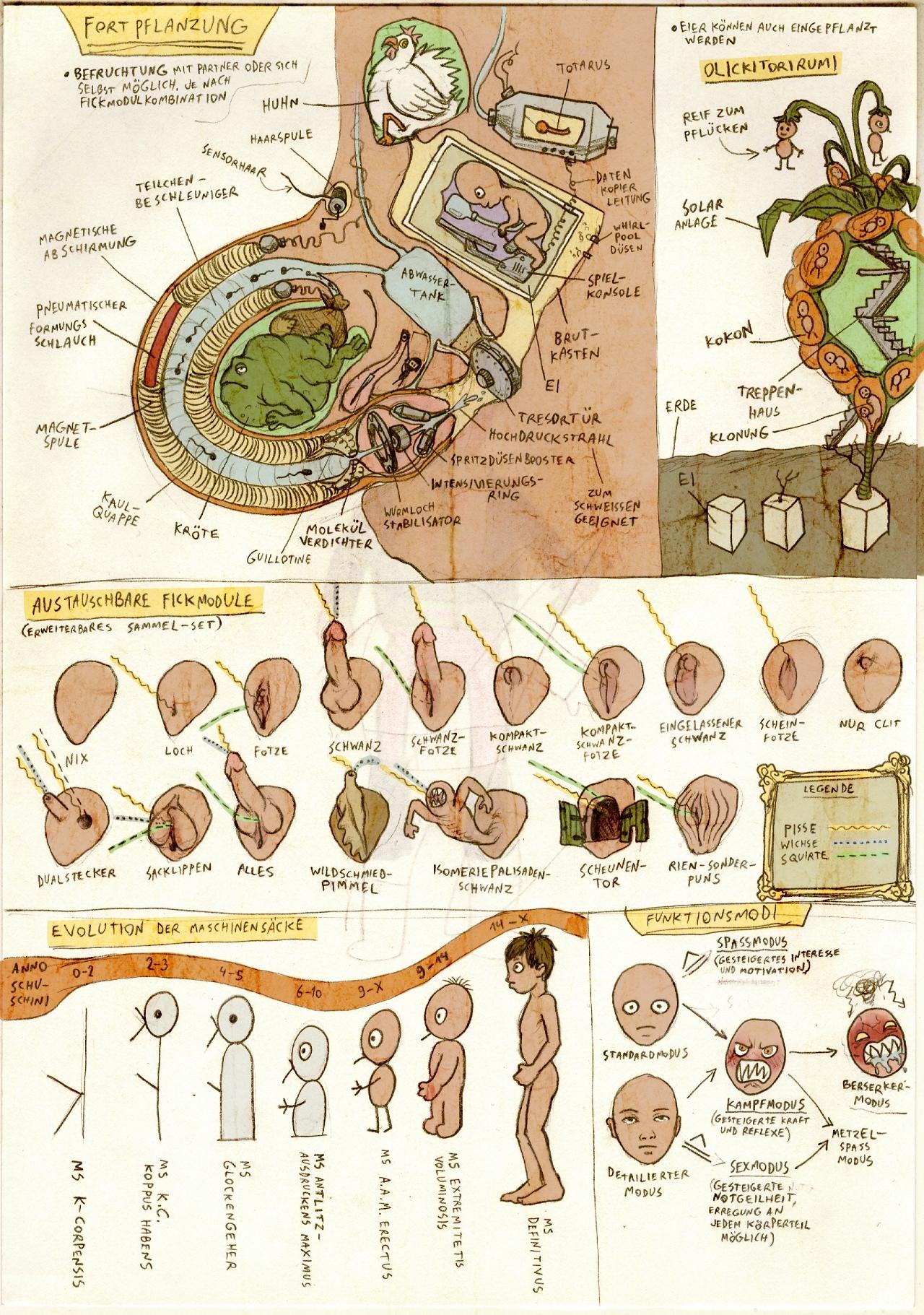 Anatomy 4: Procreation
