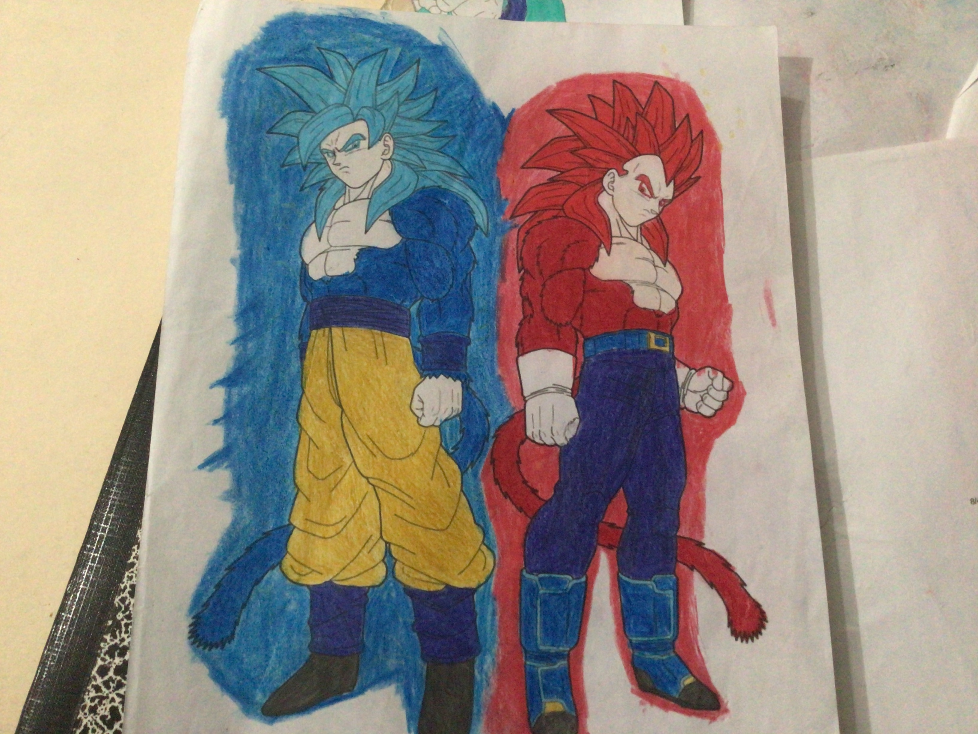 SSJB4 Goku and SSJG4 Vegeta