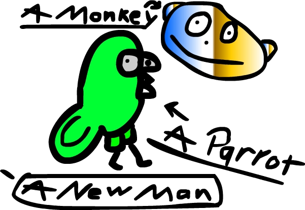 A parrot and A Monkey