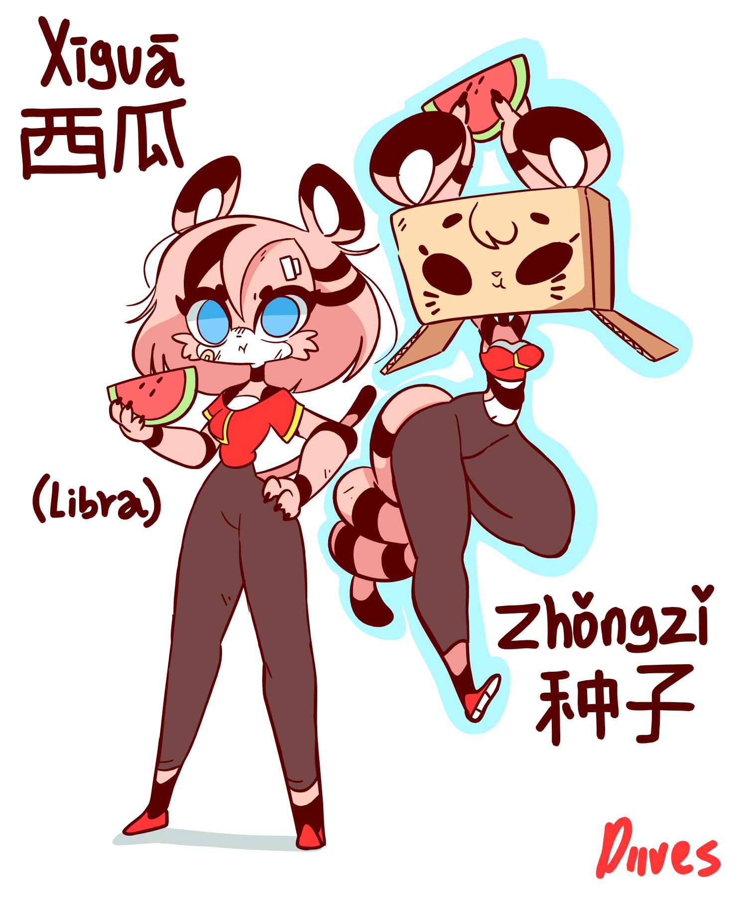Xigua And Zhongzi