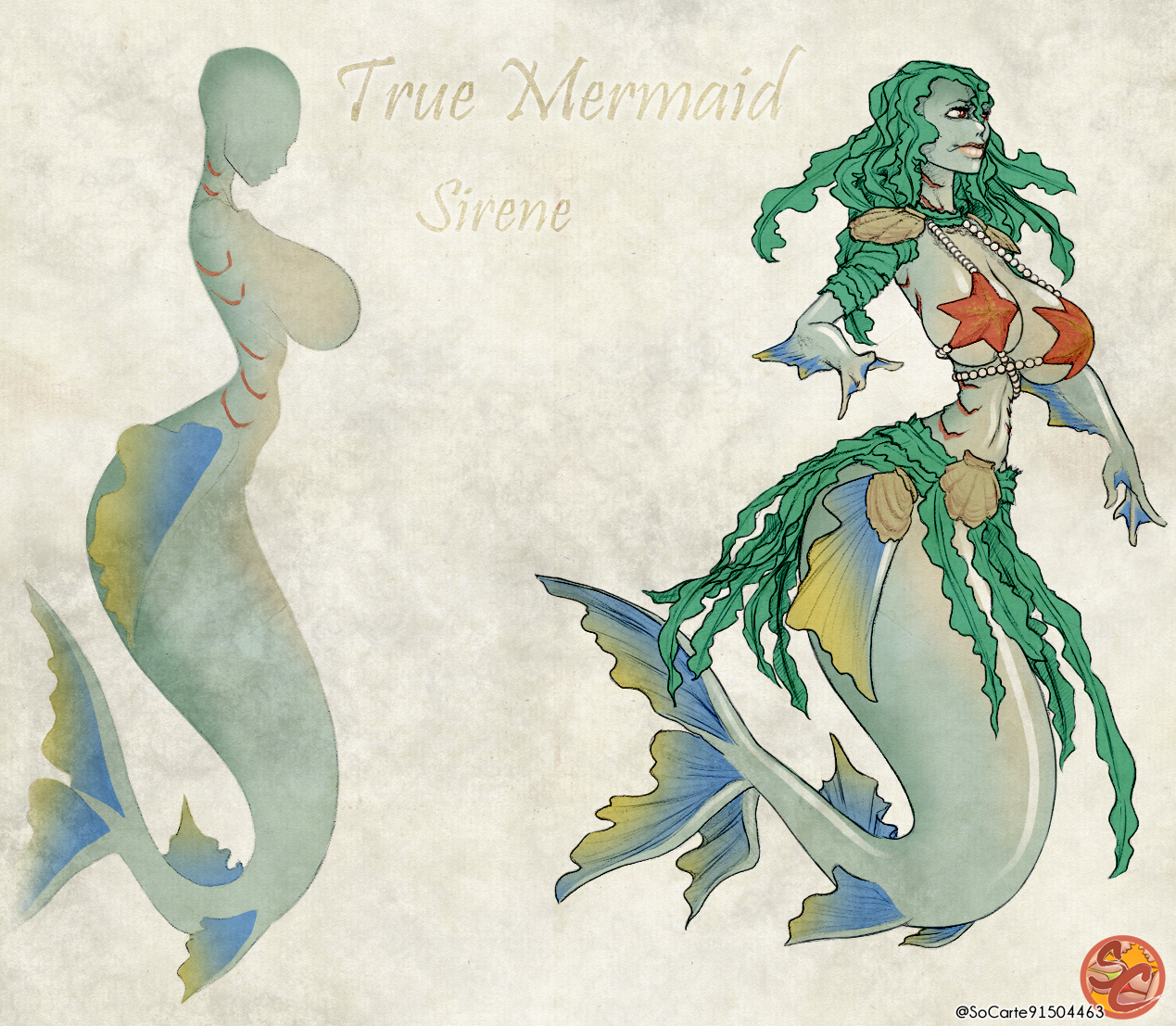 A different kind of p*rny mermaid